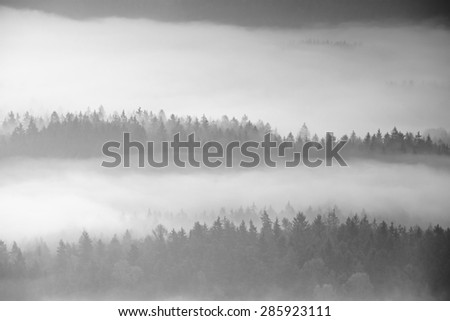 Autumn sunrise in a beautiful mountain within inversion. Peaks of hills increased from foggy background. Black and white photo. - stock photo
