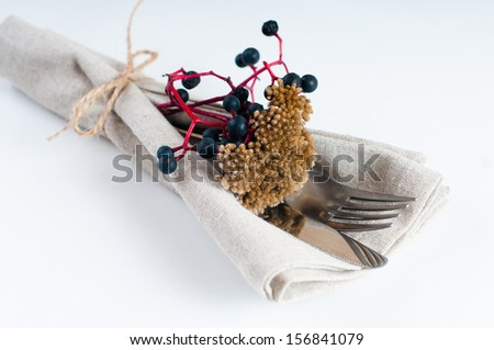 Autumn table setting with wild grapes, dried herbs and berries in a napkin, plate, fork and knife on a light background - stock photo