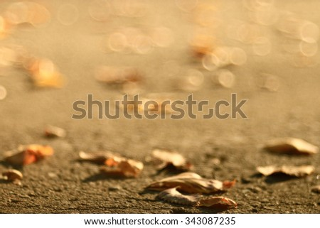 Autumn texture of yellow fallen leaves - stock photo