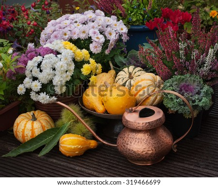 Autumn thanksgiving decor with pumpkins, flowers and watering can in garden - stock photo