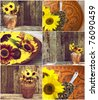 Autumn themed collage featuring  assorted rustic sunflower images. - stock photo