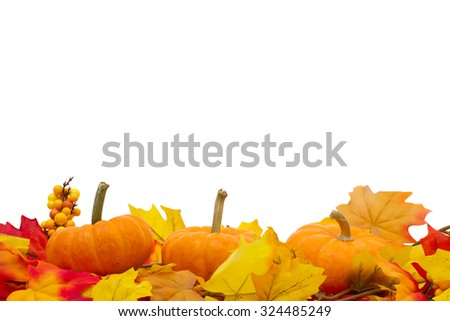 Autumn Time Background, Autumn Leaves and Pumpkins isolated on white with space for your message - stock photo