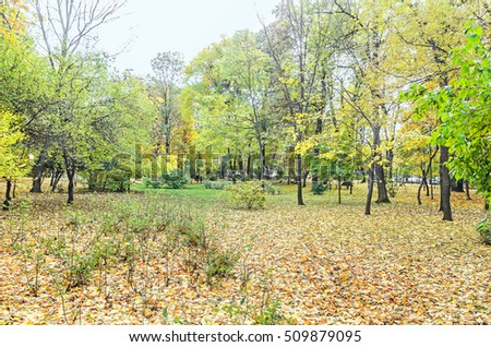 Autumn time in outdoor park with colored yellow orange trees, leaves, benches, blue sky.