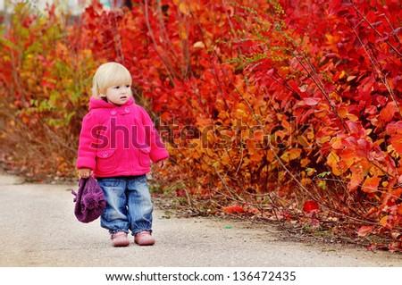 autumn toddler walk along bright bushes - stock photo