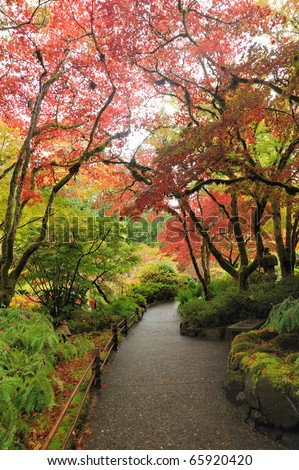 Autumn tree colors in butchart gardens, victoria, british columbia, canada