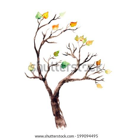 Autumn tree. Watercolor picture. - stock photo