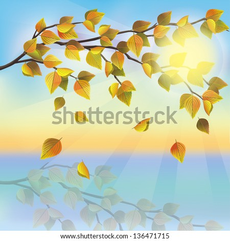 Autumn tree with flying leaves on background of sunset, beautiful nature landscape. Raster version. Place for text