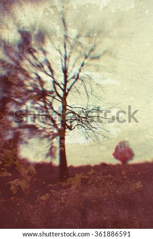 Autumn Trees; abstract, art looking image