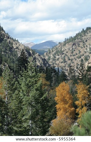 Autumn trees and pines with mountain peak background - stock photo