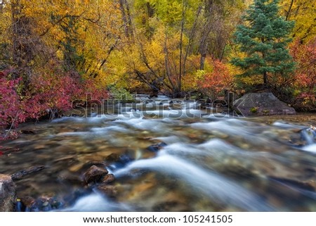 autumn trees and river - stock photo