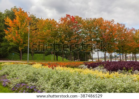 Autumn trees landscape in the garden, The Netherland - stock photo