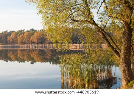 Autumn trees reflected in a lake on a background of blue sky.