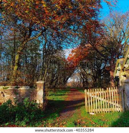 Autumn trees with path and old wooden gate