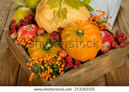 Autumn vegetables in a wooden box on brown background - stock photo