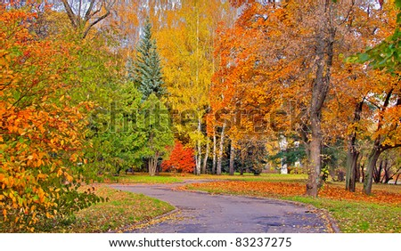 Autumn view of the park with pedestrian trail - stock photo