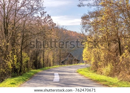autumn village road