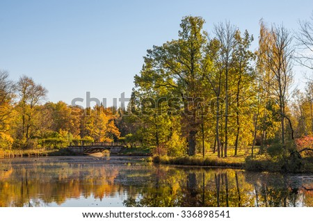 Autumn water landscape with bright colorful falling leaves in Saint-Petersburg region, Russia.