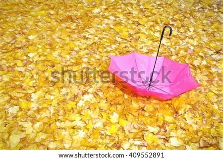 autumn weather - illustration based on own photo image - stock photo