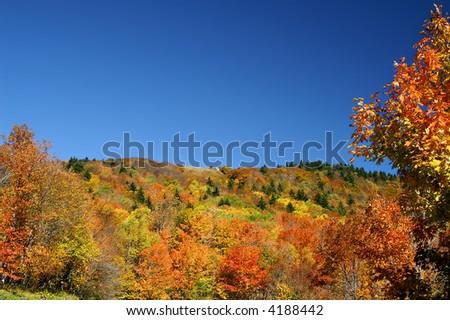 Autumn West Virginia Hillside - stock photo