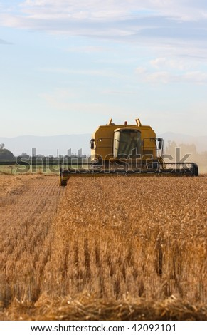 Autumn wheat harvest under way on the plains in Canterbury, New Zealand - stock photo