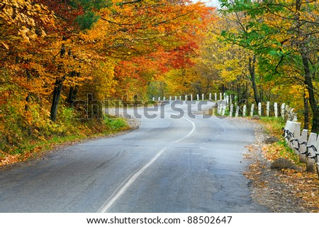 Autumn winding secondary road in the mountain forest - stock photo
