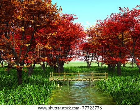 autumn woods - stock photo
