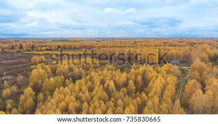 Autumn woods and fields with a bird's eye
