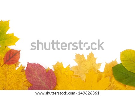 Autumn yellow, red and green leaves closeup frame