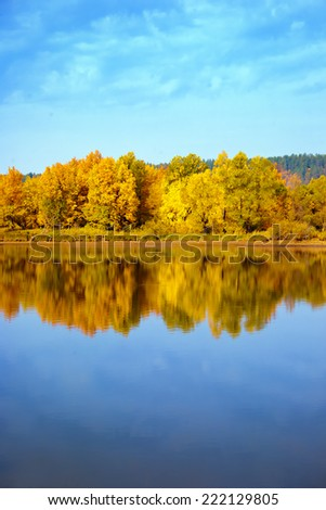 Autumn yellow trees reflection in a lake on a sunny day - stock photo