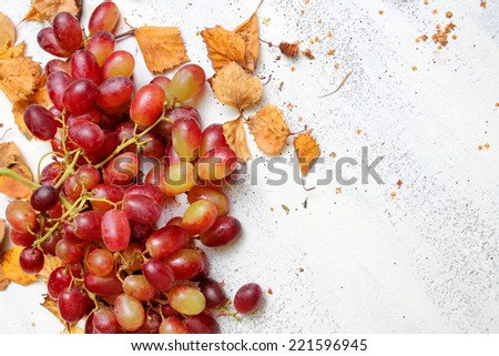 Autumnal background with ripe grapes and dry leaves - stock photo