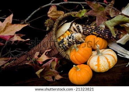 Autumnal Colors - stock photo