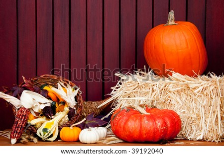 Autumnal colors - stock photo