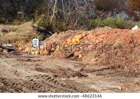 Autumnal dumping ground in horizontal - stock photo