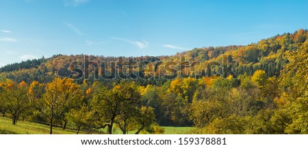 Autumnal forest in south germany - stock photo