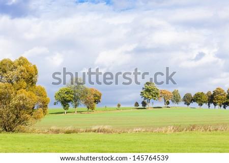 autumnal landscape - stock photo
