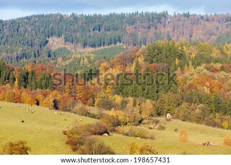 autumnal landscape, Czech Republic - stock photo