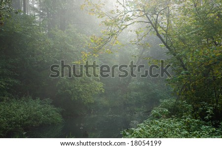 Autumnal misty early morning by forest river with lush foliage