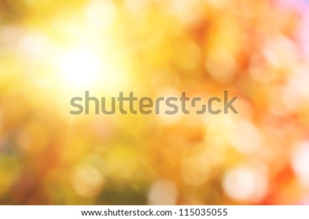autumnal natural bokeh with sun for background or backdrop - stock photo