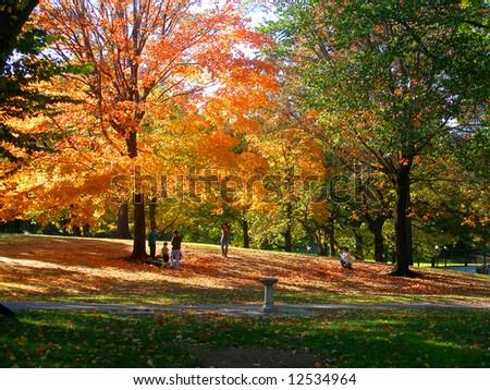 Autumnal park, New York - stock photo