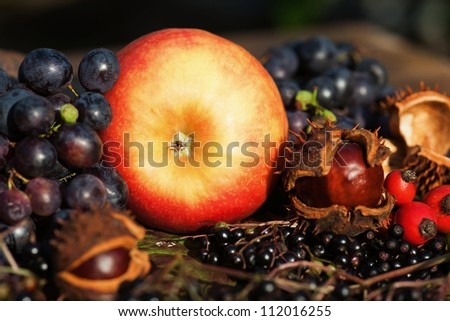 autumnal picture of an apple with chestnuts and other autumnal fruits