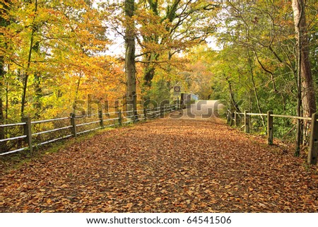 Autumnal scene of country lane in the New Forest passing over a weak railway bridge