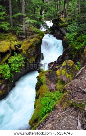 Avalanche Creek, Glacier National Park - stock photo