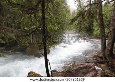Avalanche Creek in Glacier National Park, Montana - stock photo