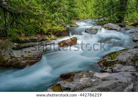 Avalanche Creek - Springtime rapid snow melting water running down Avalanche Creek in a dense forest. Glacier National Park, Montana, USA. - stock photo