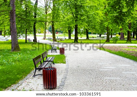 Avenue in the green park - stock photo