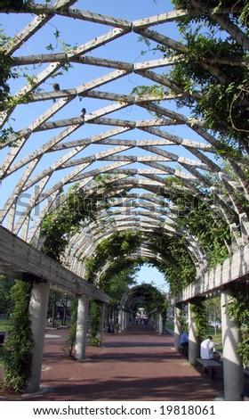 avenue of plant that create  arbor - stock photo