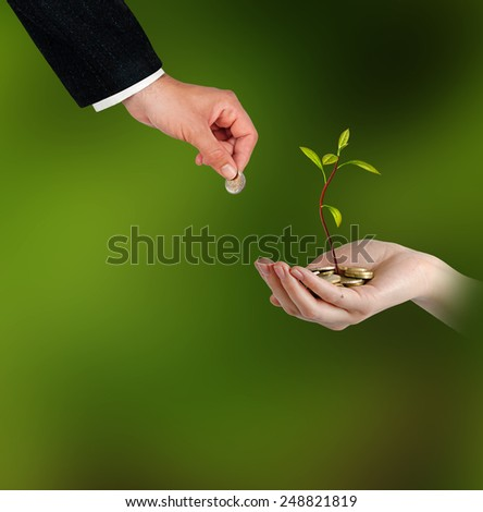 avocado growing from coins - stock photo