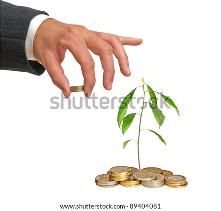 Avocado sapling growing from coins - stock photo