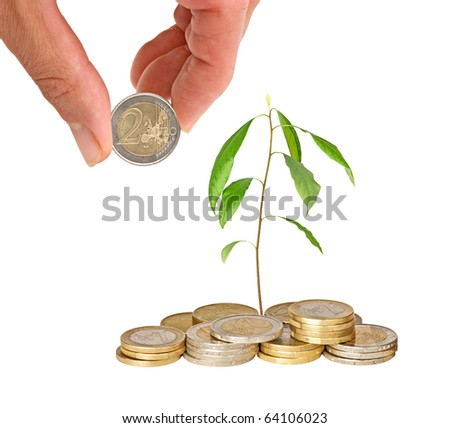 avocado seedling growing from pile of coins - stock photo