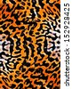 awesome colorful Tiger skin seamless background - stock photo